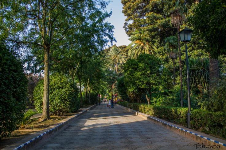 jardines de murillo (2)